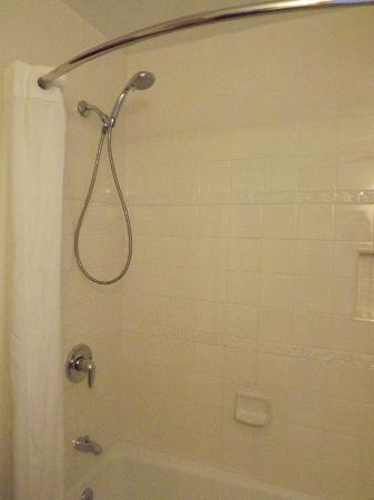 Beach House Inn & Apartments: Studio Bath/Shower