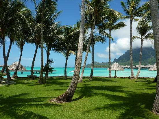 Four Seasons Resort Bora Bora: the grounds
