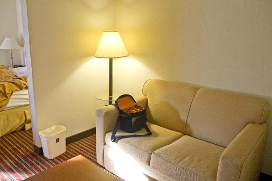 Comfort Suites At North Point Mall: Sitting area