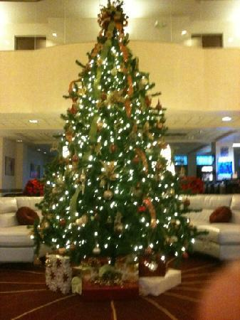 Appleton, WI: Beautiful Christmas tree in lobby