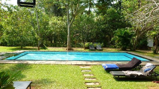 Nisala Arana Boutique Hotel: The Pool
