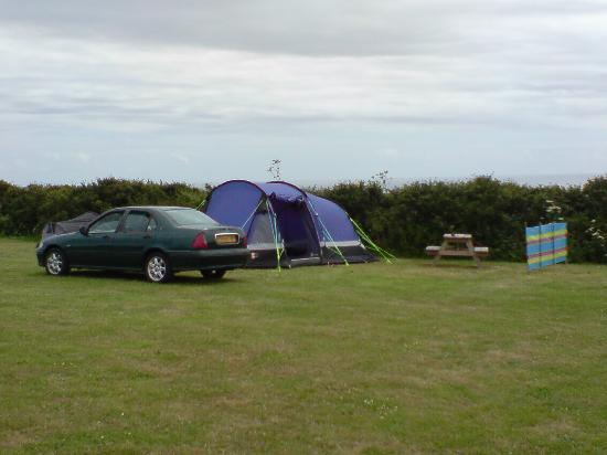 Treen Farm Campsite: Spacious pitch