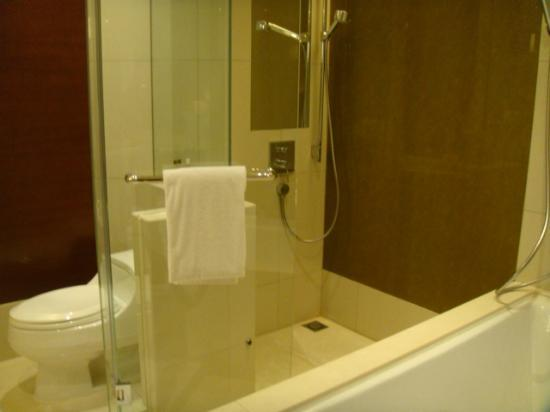 Hyatt Regency Hong Kong, Tsim Sha Tsui: Deluxe bathroom