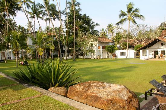 Paradise Road The Villa Bentota: Beautiful lawn
