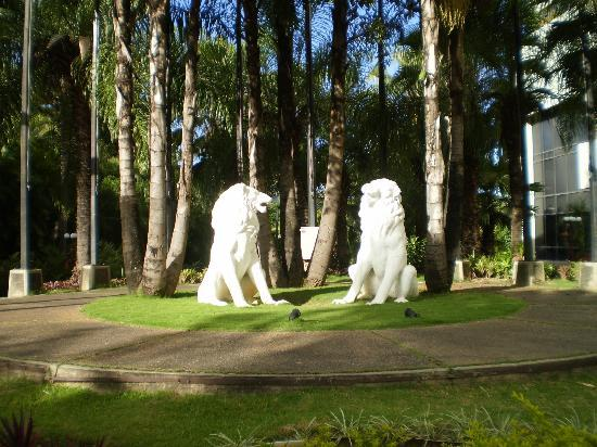 Eurobuilding Hotel and Suites Caracas: i 2 leoni di fronte all'ingresso dell'hotel
