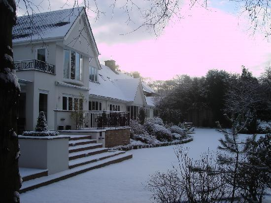 Kingsley Lodge: Winter wonderland