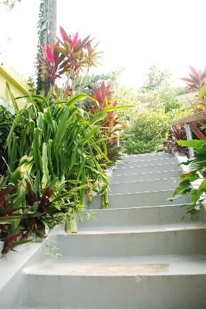 Casa del Vega: Walkway