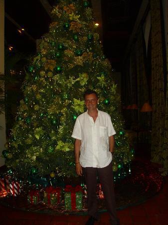 Hotel Santo Domingo: Navidad 2011