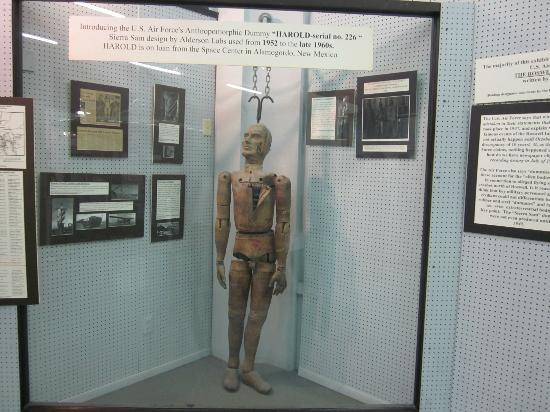 "International UFO Museum and Research Center: Harold the Crash Dummy -- is this similar to the ""alien"" folks saw?"
