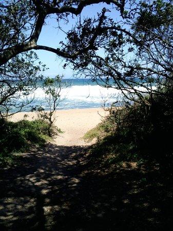 Pinnacles Seaside Unit: Pathway onto beach