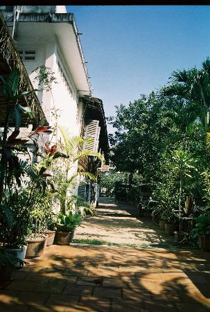 Lovely Guesthouse : The view of the yard from the outdoor lobby
