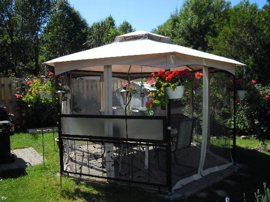 Williams Gate Bed and Breakfast Private Suites: Backyard