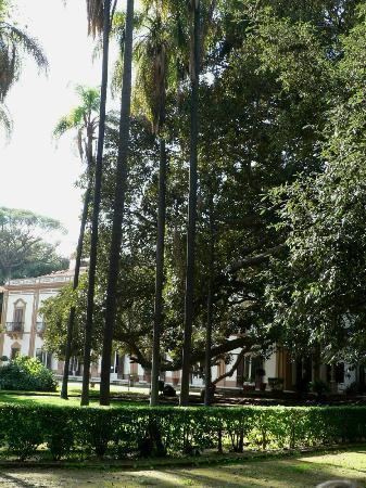 Villa Trabia: La casena sullo sfondo