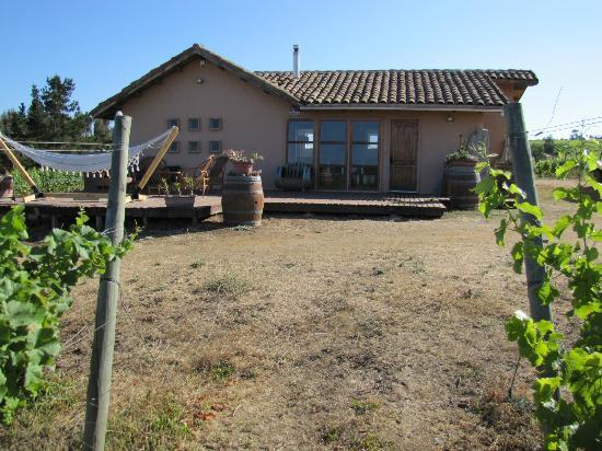 Vina Casa Marin Winery : The Guest House
