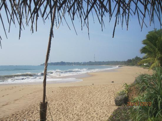 Star Fish Beach Home: Did I mention the perfect beach?!