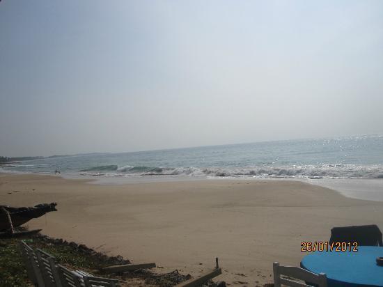 Star Fish Beach Home: The perfect beach.