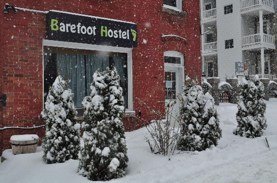 Barefoot Hostel Picture
