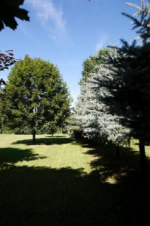 Silver Birches by-the-Lake B&B: Beautiful gardens set amongst peach orchards and vineyards