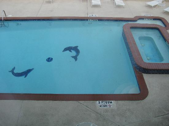 Comfort Suites Galveston : pool from our window