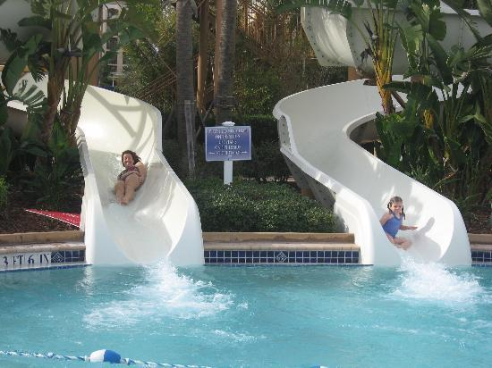 Waterslides - Picture of Bluegreen Fountains Resort, Orlando ...