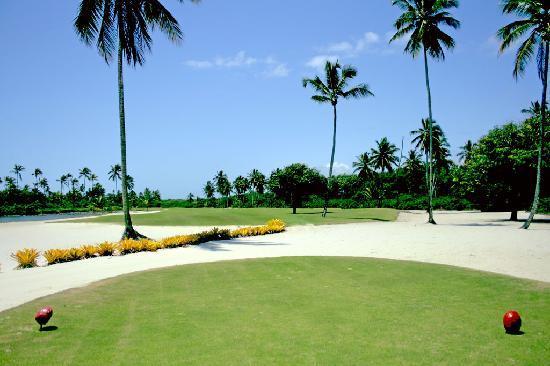 Hotel Transamerica Ilha de Comandatuba: Golfe