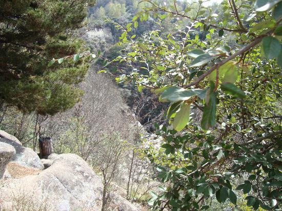 Hotel Las Cascadas: Caminatas diarias