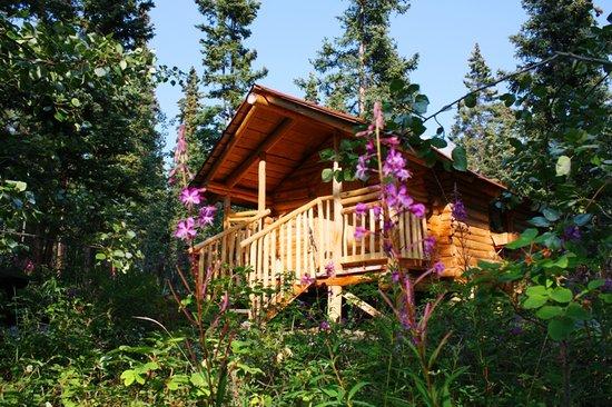 Photo of Tagish Wilderness Lodge