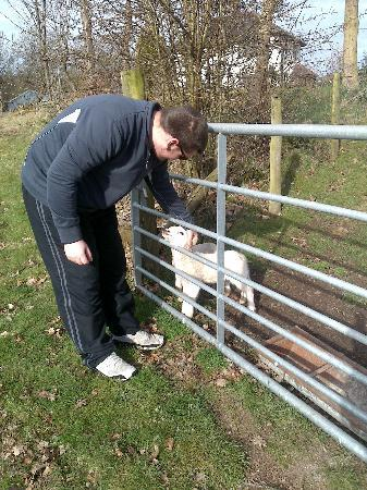The Old Vicarage: Working farm!