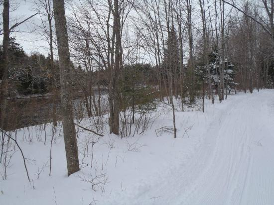 Maine Huts & Trails: Well groomed trails