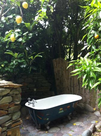 Shady Rest: Outdoor bathtub!
