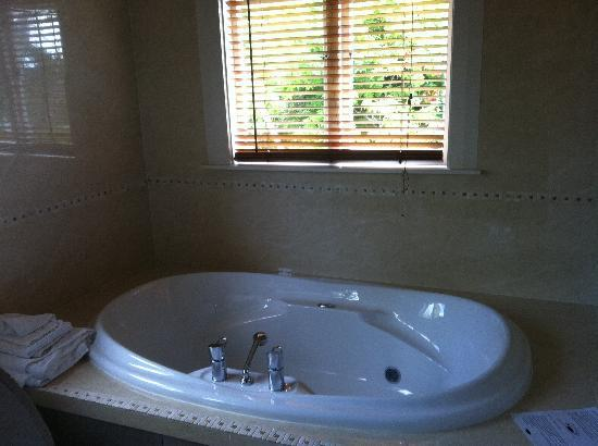 Shady Rest: TLC suite 3 ensuite jacuzzi bathtub