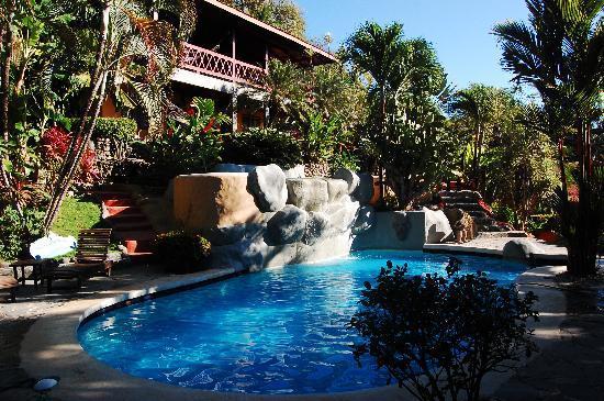 Hotel El Jardin: Pool