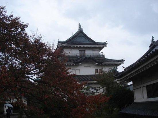 Wakayama, Japón: 和歌山城