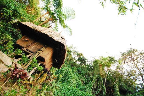 Tam-Awan Village: A village hut