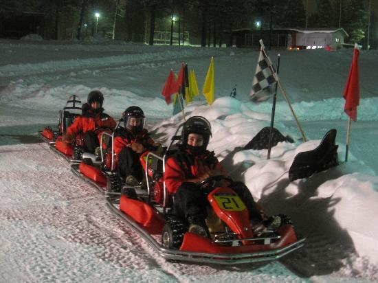 Action Park: Ice Karts