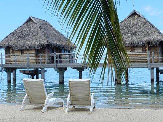 Manava Beach Resort & Spa - Moorea : Overwater bungalows that unfortunately block the ocean view