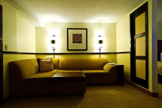 Hyatt Place Atlanta/Duluth/Johns Creek: sofa