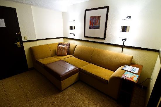 Hyatt Place Atlanta/Duluth/Johns Creek: sofa