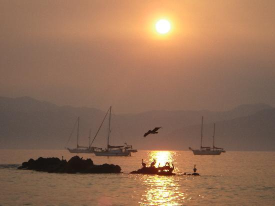 Los Angeles Locos: sunrise in the bay