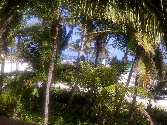 Catalonia Bavaro Beach, Casino & Golf Resort: Window/balcony view of the beach from beside the bed in a Privileged Suite. This is