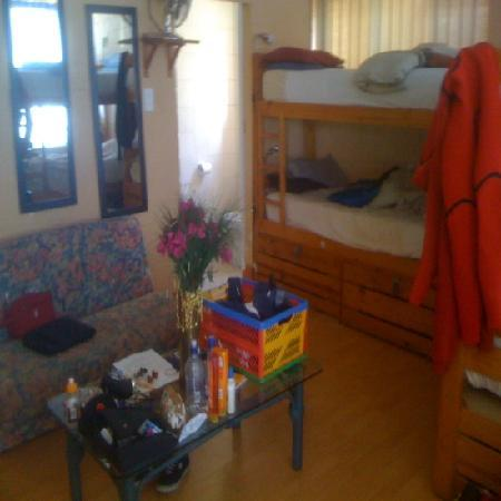 SaltyCrax Backpackers / Surflodge: The large dorm room