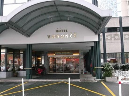 Orea Hotel Voronez: ホテル玄関