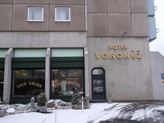 Orea Hotel Voronez: 玄関付近