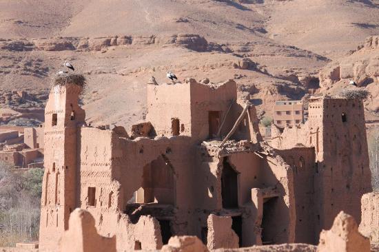 El Kelaa, Marruecos: Les cigognes qui ont donné leur nom à la kasbah