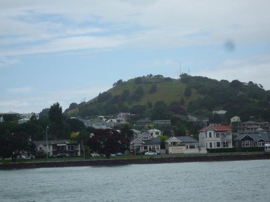 Devonport Chocolates: 船から見たデボンポート
