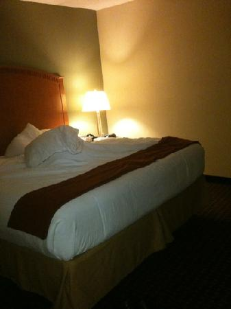 Holiday Inn Express Hotel & Suites Charlotte Airport-Belmont: king size bed