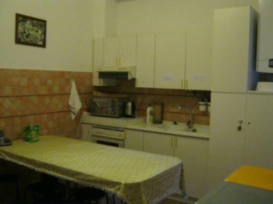 Papaya Female Hostel: Kitchen