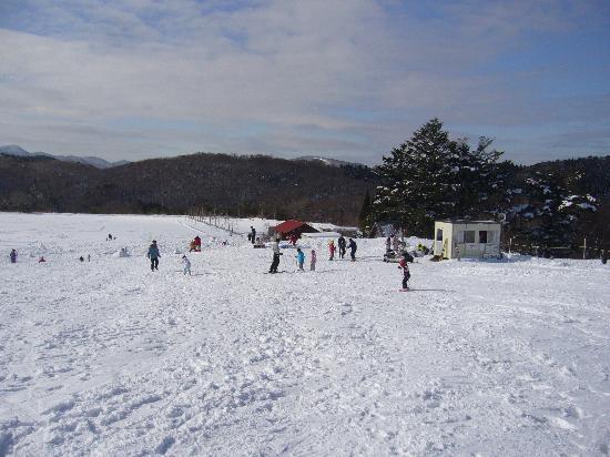 Taman Hutan Mominoki: スキーゲレンデ1