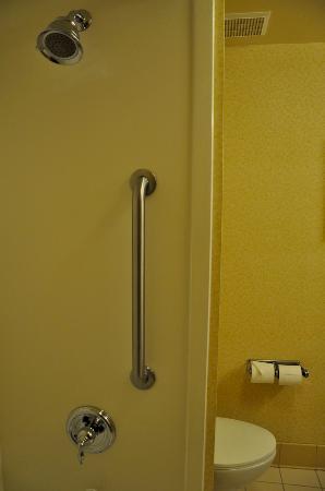 Fairfield Inn & Suites Atlanta East/Lithonia: Ducha