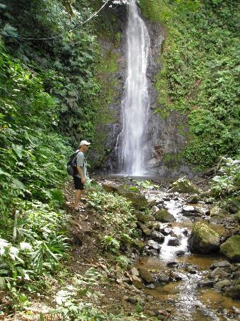 Ocaso Cerro Bed & Breakfast : local waterfall